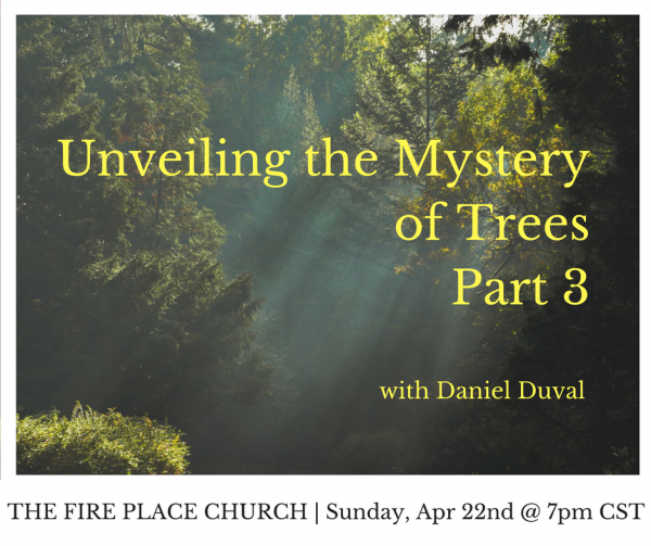 TFPC - Unveiling the Mystery of Trees Part 3